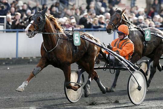 http://www.le-cheval-bleu.com/aprh/uaukir-cjeunes11.jpg