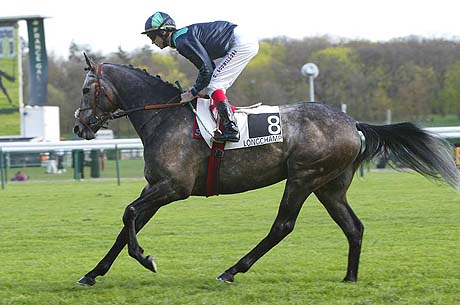 Quiets Race horses Vangelis-canter